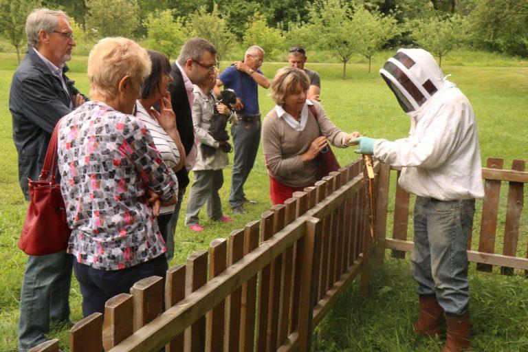 Dégustation de miel au rucher communal de Challes-les-Eaux